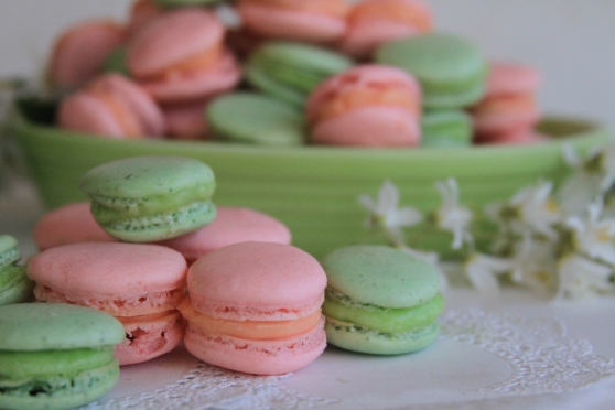 Pineapple weed and wild rose macarons